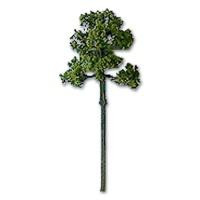 Foliage Tree Natural Green 6 mm