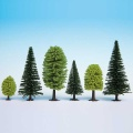 Mixed Forest, 5 - 14 cm, 10 pcs.
