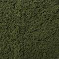 Foliage leaf green
