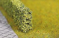 Modellbäume Pflanzen Moos Jetzt Kaufen Bei