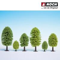 10 Laubbäume Noch 32901
