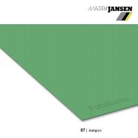 Fotokarton 300g/m² A3 - 57 blattgrün