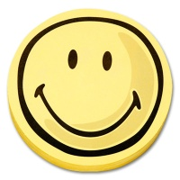 magnetoplan Rating Icon positiv, round