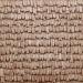 Dachplatte Holzschindeln 100 x 200 mm