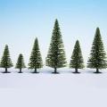Spruce, 35 - 90 mm, 10 pcs.