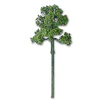 Laubbaum hellgrün 18 mm