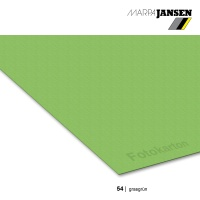 Fotokarton 300g/m² A3 - 54 grasgrün