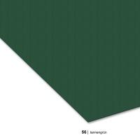 Fotokarton 300g/m² A4 - 56 tannengrün