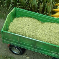 Corn Grains 150 g