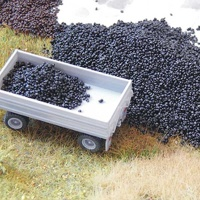 Coal 50 g