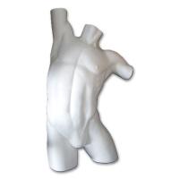 Mans Torso, Styrofoam