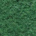 Struktur-Flock mittelgrün grob 10g